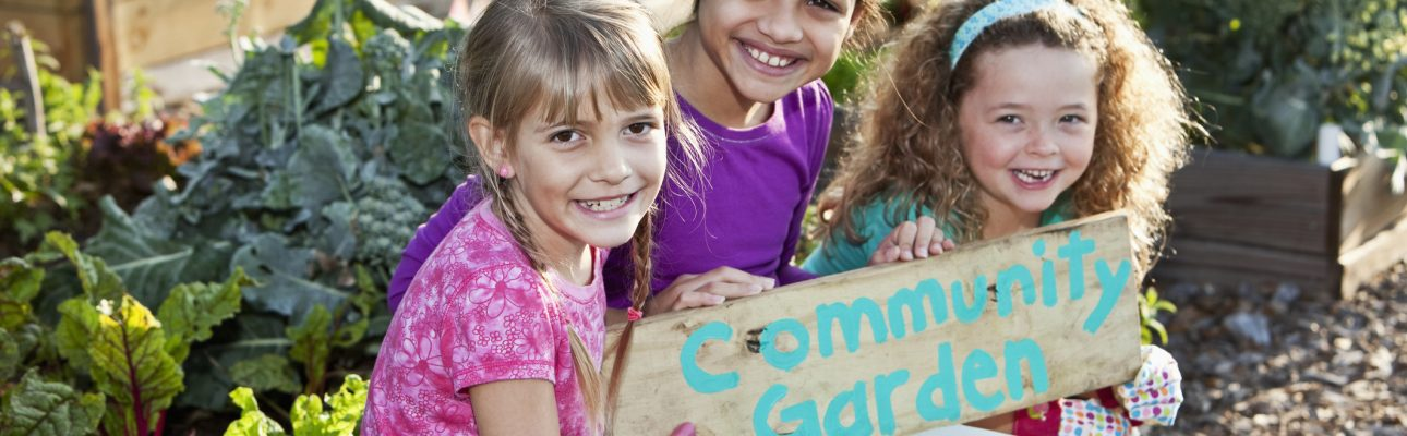 Banner image related to 'Volunteer at our Community Gardens'