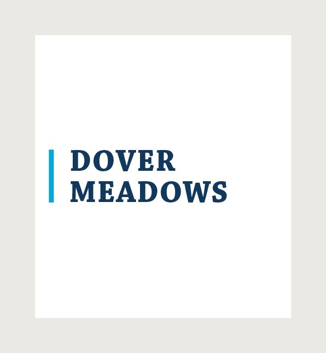 Dover Meadows logo